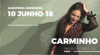 ALBUFEIRA CELEBRA O DIA DE PORTUGAL  AO SOM DO FADO DE CARMINHO