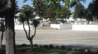 ALBUFEIRA ADJUDICA CONSTRUÇÃO DE CREMATÓRIO REGIONAL COM CONCESSÃO POR 30 ANOS